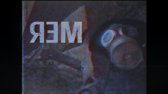 R.E.M. or a find of the future