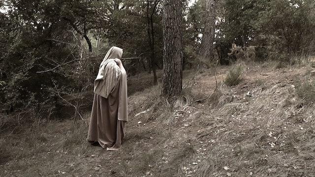 Short Film - Official Selection FOVFF