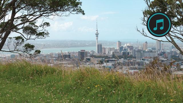 Auckland and Wellington Run