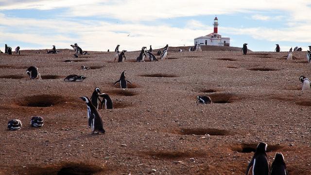 Chilean Patagonia Hike