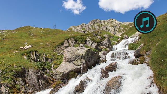 Swiss Alps Hike