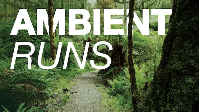 Ambient Runs