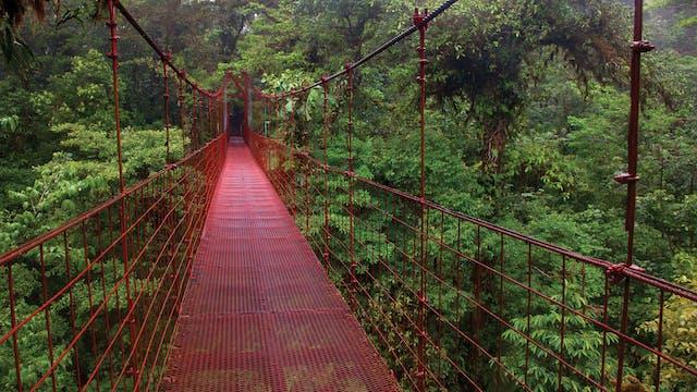 Costa Rica Run