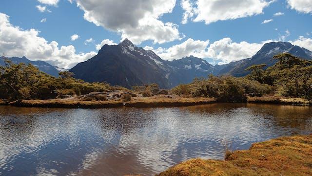 South Island, New Zealand Run