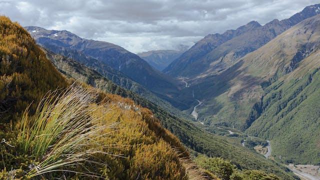 New Zealand Hike