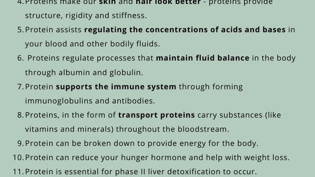 Why is Protein Essential?