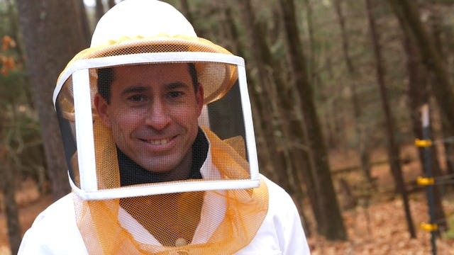 Interview with Guillaume Gauthereau of New York Bee Sanctuary