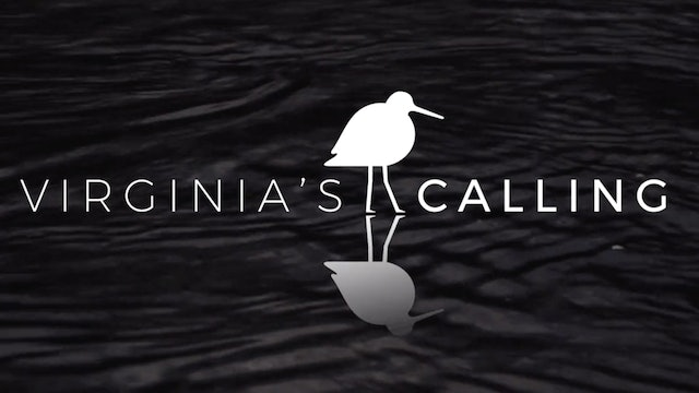 Selections from Virginia's Calling