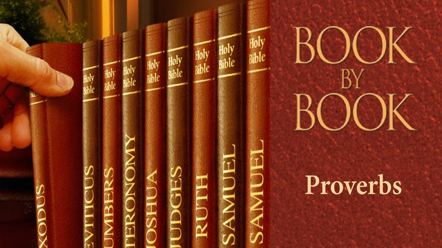 Book by Book - Proverbs - The light of Christ shines brightly