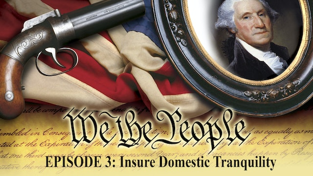 We The People - Insure Domestic Tranquility