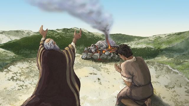 REY de GLORIA - El Plan de Dios avanza
