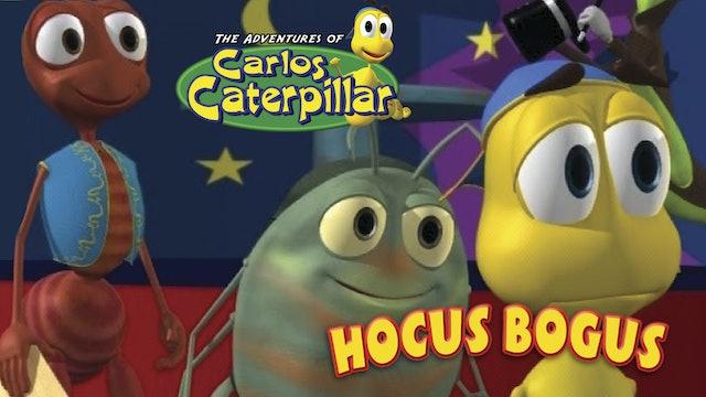 Carlos Caterpillar - Hocus Bogus