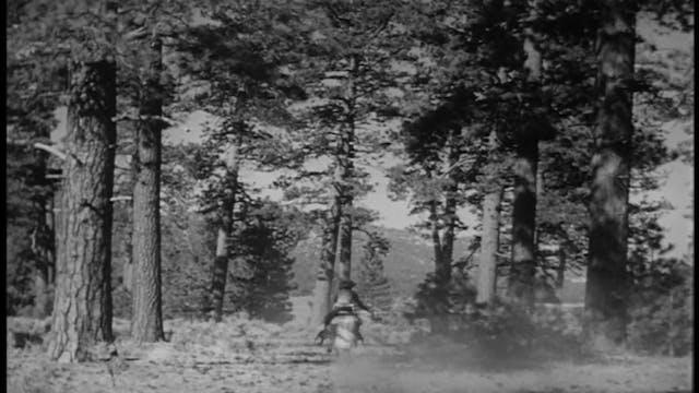 Dale Evans Beyond Happy Trails - Empt...