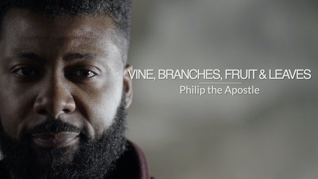 Three Gospels EP9 - Vine, Branches, Fruit and Leaves