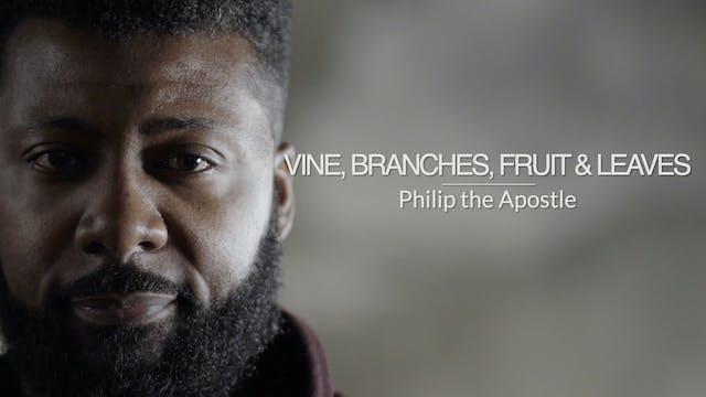 Three Gospels EP9 - Vine, Branches, F...