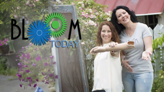 Bloom Today - A Trauma Triggered Aval...