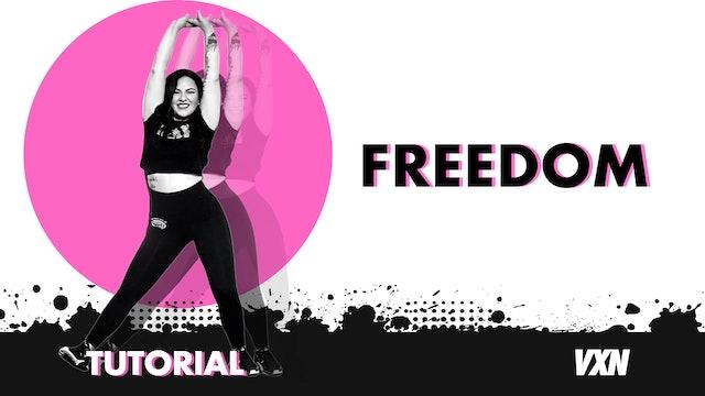 VXN - Freedom tutorial