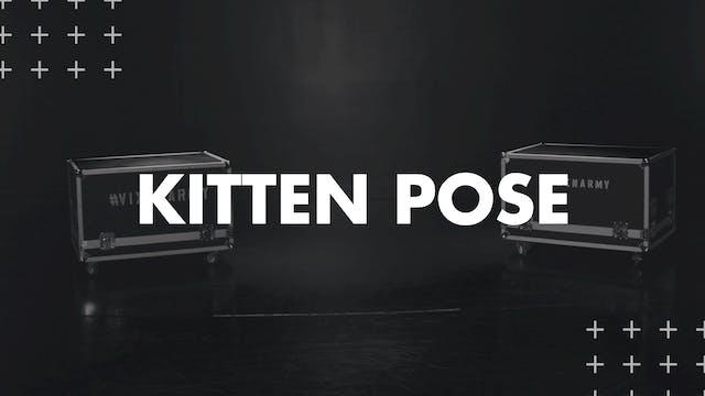 KITTEN POSE