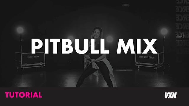 PITBULL MIX - TUTORIAL