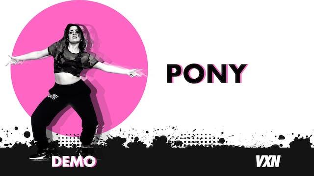 VXN - Pony demo