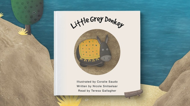 Little Grey Donkey