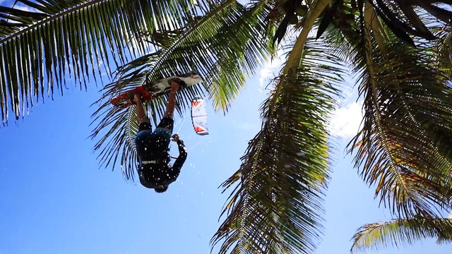 KEVVLOG - On Top Of The World or Cabarete's Palmtrees
