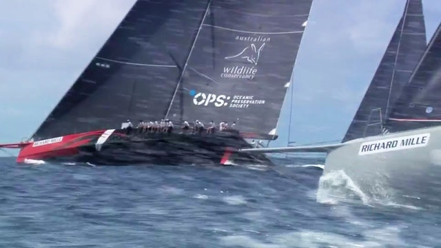 Les Voiles de St Barth 2016 - Day For Close Matches