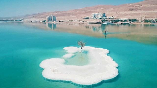 Foiling The Dead Sea