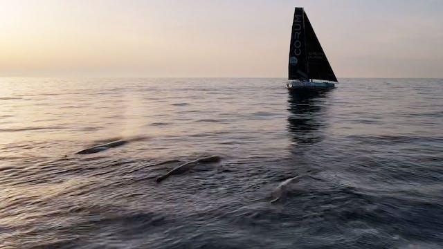 The Ocean Race Europe 2021 - Leg 3 Da...