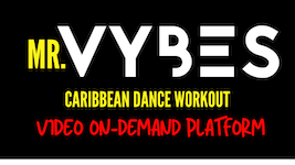 Mr.VYBES Video On-Demand
