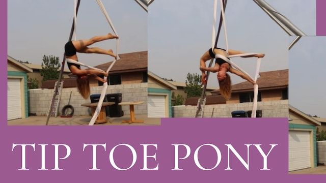 Tip Toe Pony Sequence - INT
