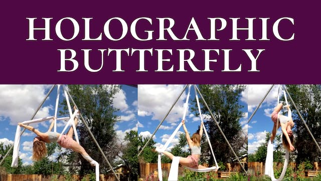 Holographic Butterfly Sequence - INT/ADV 4 SHAPES!