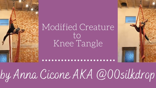 Modified Creature to Knee Tangle - by Anna Cicone