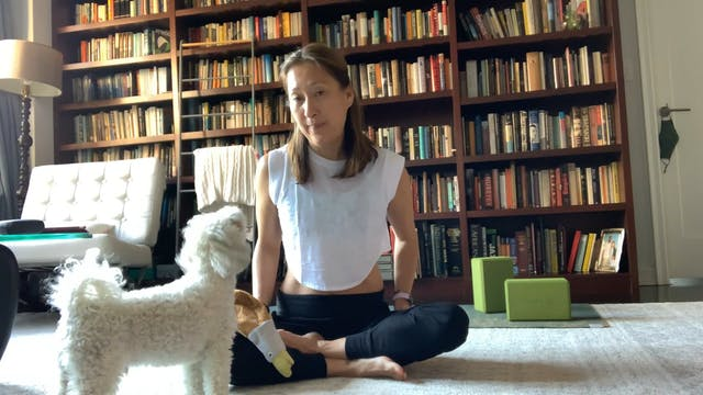 Therapeutic Flow with Yuliana Kim-Gra...