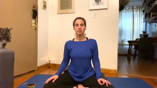 Breathwork and Short Yoga Nidra with Andrea Borrero (33 mins)