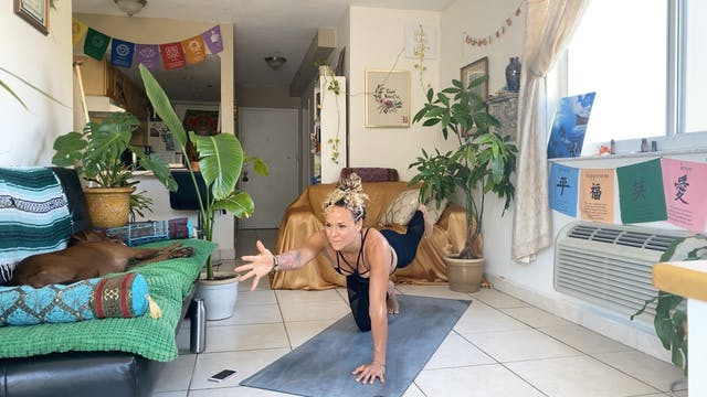 Power Yoga with Megan Eileen (60 mins)