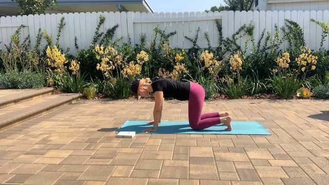 Twisting and Cleansing Flow with Dana Heller (30 mins)