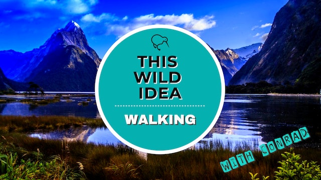 THIS WILD IDEA In New Zealand - Walking With Conrad