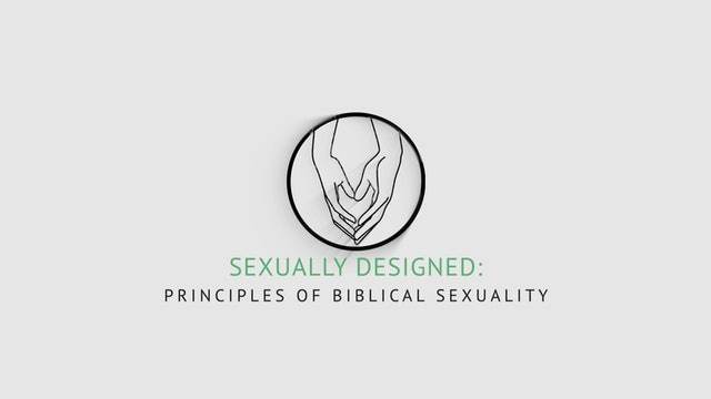 Trailer: SEXUALLY DESIGNED