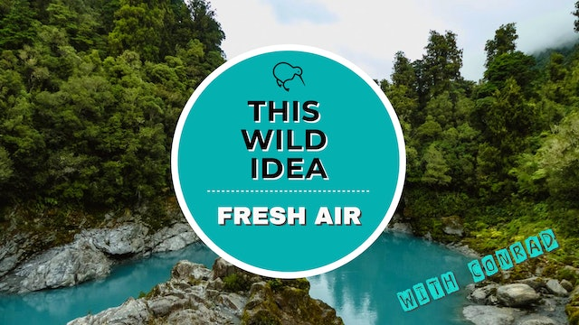 THIS WILD IDEA In New Zealand - Fresh Air With Conrad