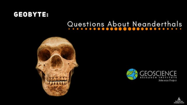Questions about Neanderthals