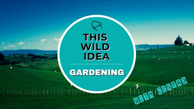 THIS WILD IDEA In New Zealand - Gardening With Conrad