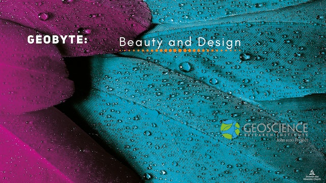 Beauty and Design