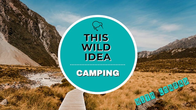 THIS WILD IDEA In New Zealand - Camping With Conrad