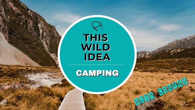 THIS WILD IDEA In New Zealand - Campi...