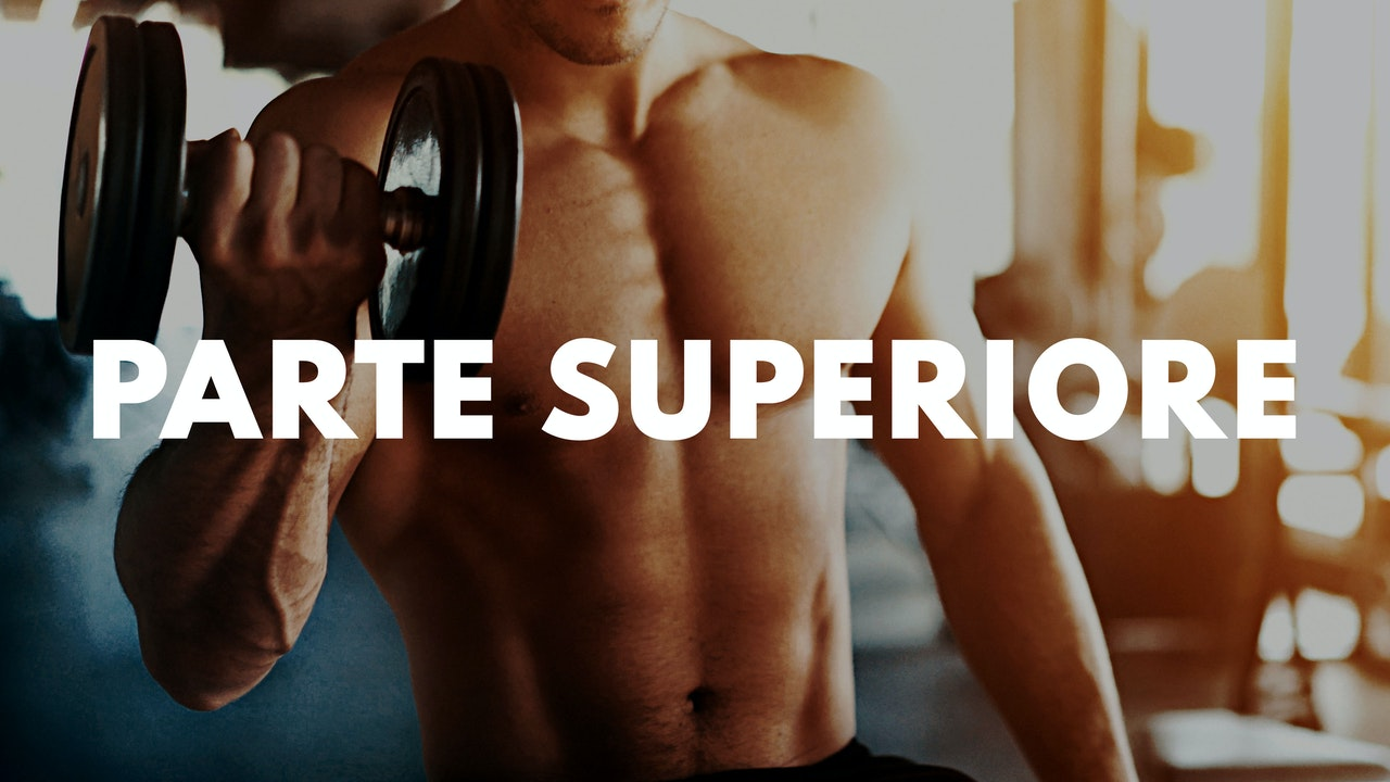 PARTE SUPERIORE
