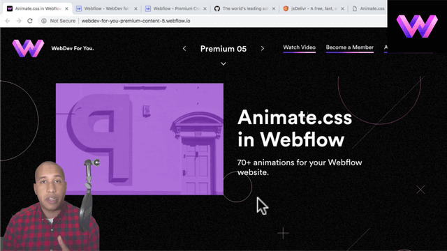 Animate.css in Webflow