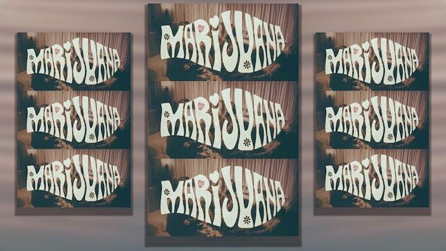 Sonny Bono's Marijuana, 1968