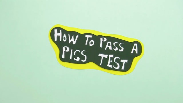 How to Pass a Piss Test