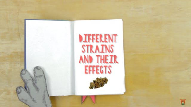 Different Strains &Their Effects